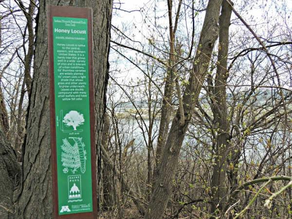 Stop along the Indian Mounds Regional Park Tree Trek in Saint Paul Minnesota
